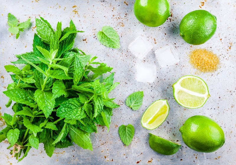 virgin mojito flatlay shot with limes, mint sugar and ice cubes on a grey background with brown speckles