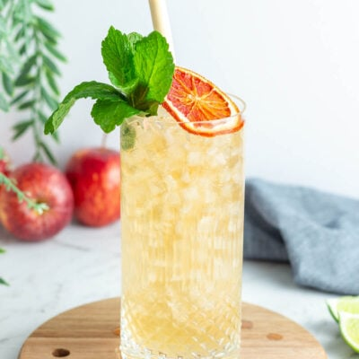 a close up of a light orange drink in a tall glass garnished with mint and a dried blood orange wheel
